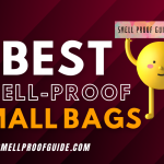 Best Small Smell-Proof Bags & Stash Cases For Travelling (2021)