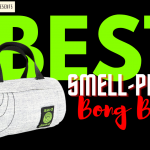 10 Best Smell-Proof Bong Bags (Portable & Small) 2021
