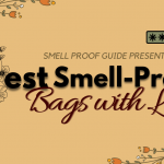 7 Best Smell-Proof Bags with Lock - Stash Pouch & Containers (2021)