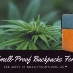 10 Best Smell-Proof Backpacks For Weed | Cannabis Storage Bags (2021)