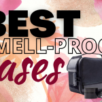 6 Best Smell-Proof Cases (Weed Carrying Bags) in 2021